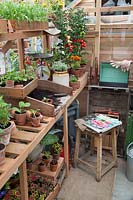 Greenhouse with potting bench, vegetables and accessories.