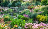 View of bog garden, marginal planting around pond with mixed planting beyond