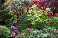 Oriental statue in border of conifers, Azaleas and Acers