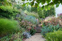Pathway and steps through grasses, Hydrangea, Euphorbia and Anemone, Oxfordshire