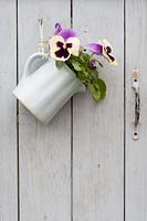 Ceramic jug of pansies hanging from a hook on a painted garden gate.