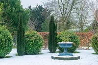 Cast iron urn surrounded by Taxus baccata 'Fastigiata', clipped Viburnum tinus balls and Fagus - beech hedge in snowy garden.