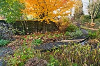 View of wooden decking pathway leading across pond in autumnal garden.
