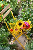Cut flowers including Zinnias, Solidago and Helianthus on garden chair.