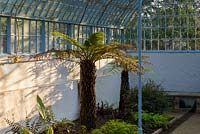 Inside grotto and fernery looking towards glass sides and roof
