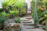 Stone steps to monument through rockery planted with tree ferns, palms, euphorbia and Echium pininana Giant Viper's Bugloss. Arundel Castle, West Sussex, UK