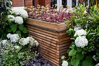 Contemporary wood batten bin store in front garden with succulent green roof, surrounded by Hydrangea arborescens Anabelle Heuchera Plum Puddingdesigned by Kate Eyre Garden Design