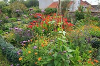 View of potager with flowering perennials and annuals.