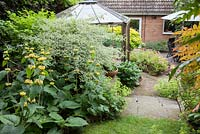 View from garden towards house, showing a bed with Phlomis russelliana,