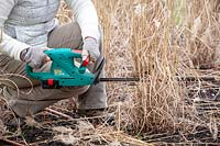 woman cutting back grasses using a hedge trimmer.