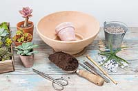 Tools and ingredients for creating a succulent pot in a pot