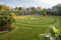 View of mown labyrinth planted with display of Tulips. Arundel Castle, West Sussex, UK