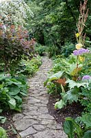 View down winding paved pathway, running through mixed woodland borders. Barnsley House, Gloucestershire, UK.