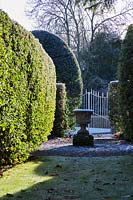 Classic urn surrounded by clipped hedges and topiary by garden gate.