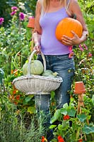 Women with harvested pumpkins