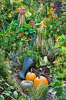 Display of harvested pumpkins, boots and spade in a colourful potager