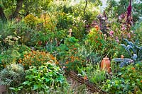 Full potager-style vegetable garden with flowers and herbs