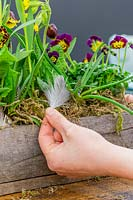 Woman adding feather to spring table decoration with Primula 'Gold Lace', Viola, Primula veris and Fritillaria michailovskyi.