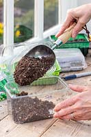 Woman using a scoop to add compost to recycled plastic trays prior to sowing seeds.