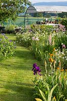 Grass path through natural planting with bearded iris in wildflower meadow, in the background, a potting station, fruit trees