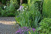 Bearded iris and pinks next to granite paved garden path