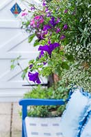 Petunia, lobelia and alyssum cascade out of a hanging basket above a 