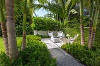 View along a path to paved area with chairs and a firepit. Nearby plants include beds of Phymatosorus scolopendria under palm trunks and behind the chairs 