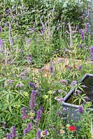 Steel water feature surrounded by Verbena bonariensis, 