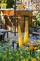 View of drinks bar and seating area with Eremurus - Foxtail Lily - in the foreground at 