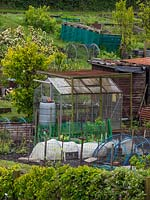 Allotments with fruit brushes and trees and equipment used for growing such as greenhouse, water butt, fencing, row cloches and sheds