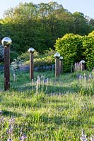 View of meadow with Camassia subsp. leichtlinii with shadows cast by avenue
