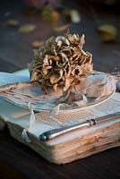 Dried Hydrangea place setting on vintage book charger