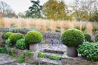 Terraced seating area bordered by pots of clipped box and troughs of Campanula at Barn House, Chepstow, UK.