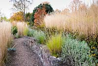 Retaining wall in curved, terraced, sloping garden with planting pockets for Eragrostis curvula, and lines of catmint, Rudbeckia fulgida var. deamii and Calamagrostis x acutiflora at Barn House, Chepstow, UK.
