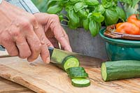 Woman slicing harvested Cucumber 'Burpless Tasty Green' on chopping board