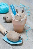 A chitting seed potato labelled 'Charlotte' and stick on googly eyes, in a terracotta pot with a trowel and a blue ball of twine.