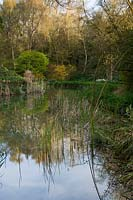 View of pond and surrounding woodland at Abbey House Gardens, Malmesbury, UK.