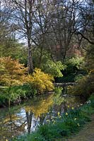 View of River Avon and surrounding woodland planting at Abbey House Gardens, Malmesbury, UK.