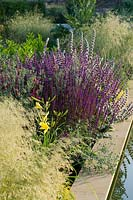 Flowering perennials and grasses by long, narrow pool in modern garden.