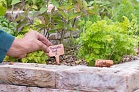 Woman adding copper labels to newly planted herbs.