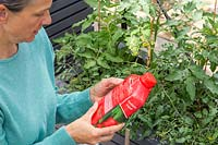 Woman reading instructions on tomato feed bottle