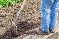 Woman using garden fork to mix in well rotted manure with soil.