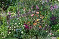 A relaxed wildlife friendly border planted with foxgloves, alliums, roses, achilleas, salvias and sweet peas. BBC Springwatch Garden, designed by Jo Thompson. RHS Hampton Court Palace Garden Festival, 2019.