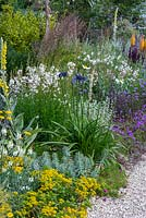 Mixed border of Agapanthus, sedums, verbascums, Gaura and verbenas. Beth Chatto: The Drought Resistant Garden, designed by David Ward, RHS Hampton Court Garden Palace Show, 2019.