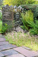 Stone path leading through old iron ornate gate by stone wall with Saxifraga x urbium Cotoneaster and ferns