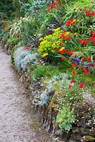 A retaining wall alongside a path is colonised by Erigeron karvinskianus, succulents, osteospsermums and gazanias, with planting in the border above dominated by phormiums, Crocosmia 'Lucifer' and euphorbias.