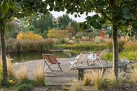 Looking past Sorbus trunks and feather grasses to deckchairs on curved patio by natural swimming pool.