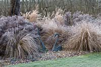 Swan sculptures rest on a carpet of Cyclamen coum, surrounded by frosted Asters, Miscanthus, Pennisetum, red tussock grass and Stipa.