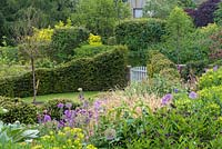 View down steep borders of euphorbia, centaureas, cardoon, aquilegias and alliums, to garden gate leading to rounded lawn enclosed in undulating yew hedges.