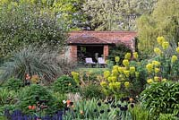 Country garden with a brick garden room is glimpsed through Euphorbia characias, milkweed or spurge.